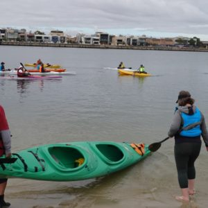West Lakes Paddle Sports Dolphin